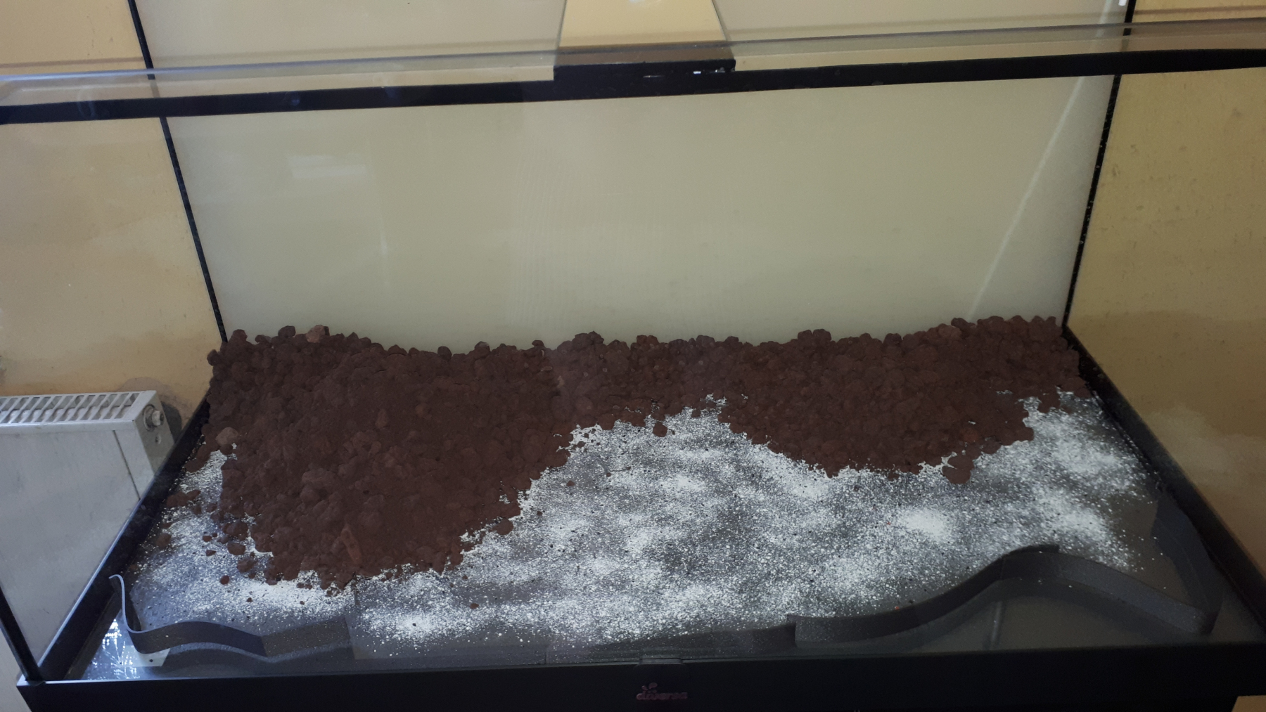first_aquascaping-04